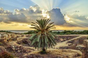 Cyprus Paphos